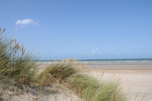 Duinen en strand